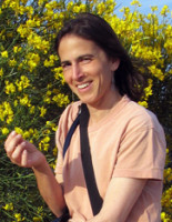 Prof. Dr. Susan Pollock