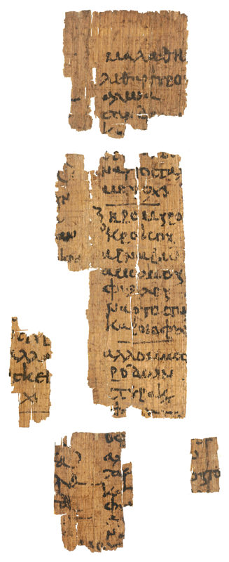 A Late-antique medical papyrus, excavated in Hermoupolis Magna, Middle Egypt, and currently housed in the Egyptian Museum of Berlin. Dated at the 6th century, it contains on five fragments a list of herbs and minerals for the preparation of medical recipes.