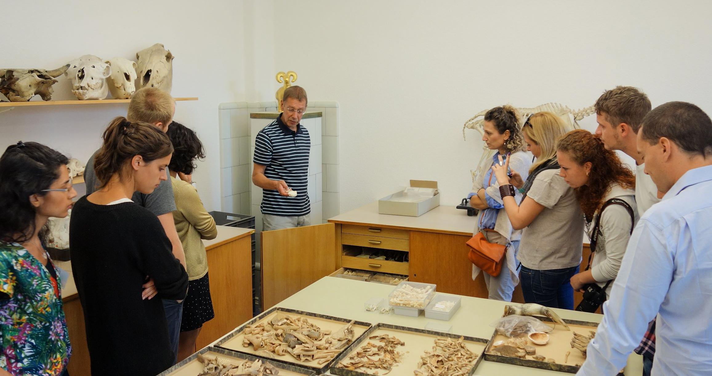 Im naturwissenschaftlichen Referat des Deutschen Archäologischen Instituts (DAI) gibt der Biologe Norbert Benecke eine Einführung in die Archäozoologie | Foto: Berliner Antike-Kolleg