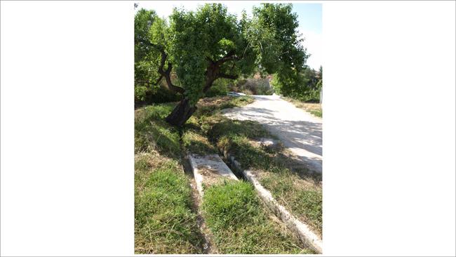 Irrigation channels in the Vega of Vélez Blanco, SE Spain | Photo: S. Isselhorst/ © S. Isselhorst