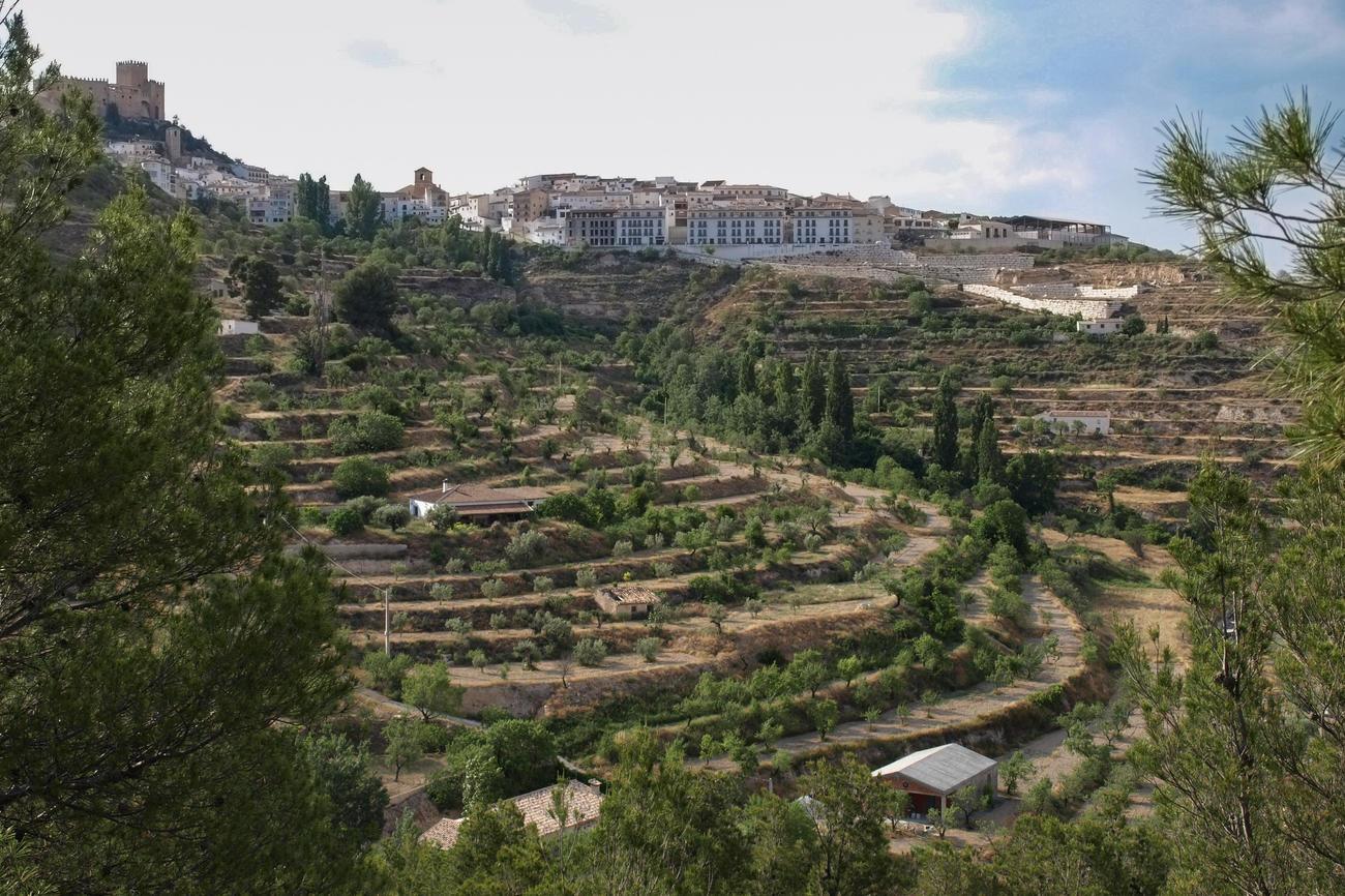 Die Bewohner des andalusischen Dorfs Vélez Blanco bewässern die terassenförmigen Landwirtschaftsflächen auch heute noch mit einem Kanalsystem, das vor mehr als 1000 Jahren angelegt wurde. Bildquelle: Jonas Berking