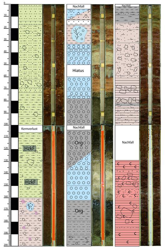 Drilling core with Holocene and Late Pleistocene sediments