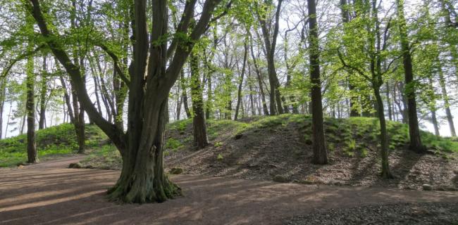 Königsgrab von Seddin | Photo: Groundhopping Merseburg | CC BY-NC 2.0