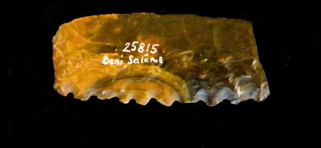 Denticulated bifacial sickle blade | UW25815, Studiensammlung des Instituts für Ur- und Frühgeschichte Universität Wien, 2017, Dr. Joanne Rowland, Dr. Geoffrey Tassie, The Neolithic in the Nile Delta, Edition Topoi, DOI: 10.17171/1-9-2179-3